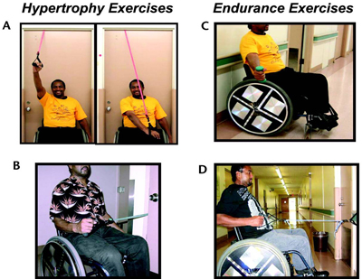 Types of strengthening exercises recommended for muscles that support the shoulder.